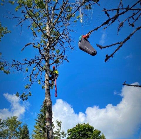 Mannskaper fra Mjøndalen rykket ut og reddet kvinnen som hang mange meter opp i lufta etter en paraglider–ulykken i Hvittingsfoss torsdag kveld.