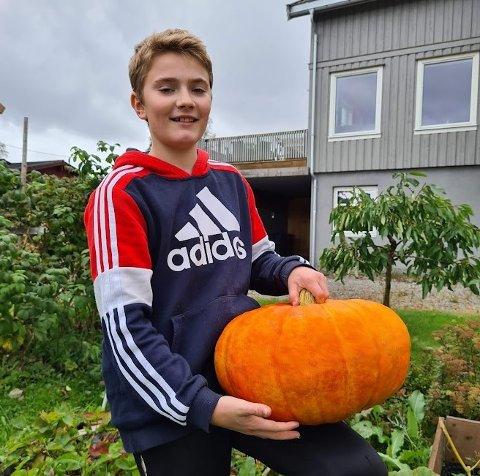 Jeg melder meg på konkurransen med et gresskar på 10,7 kg. Det er dyrket på Skjeftehaugen 3,  skriver Magnus Håven Skjemstad.