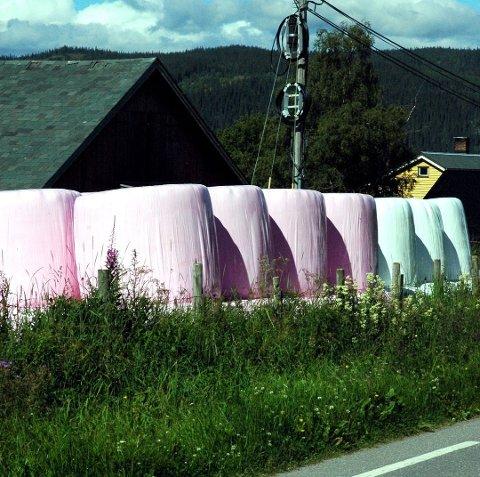 POPULÆRT: Da den rosa rundballeplasten dukka opp for tre år sidan vart den fort utseld hos Felleskjøpet på Fagernes. Sal av rosa- og seinare blå og gul rundballplast var ein landsdekkande aksjon der deler av inntektene gikk til, høvesvis, brystkreft-, prostatakreft- og barnekreft-saka.