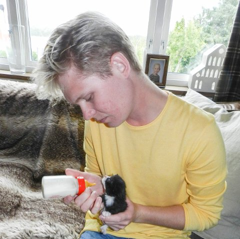 HJELPER: Kim-Robin Gjødalstuen mater de fem kattungene hver fjerde time.
