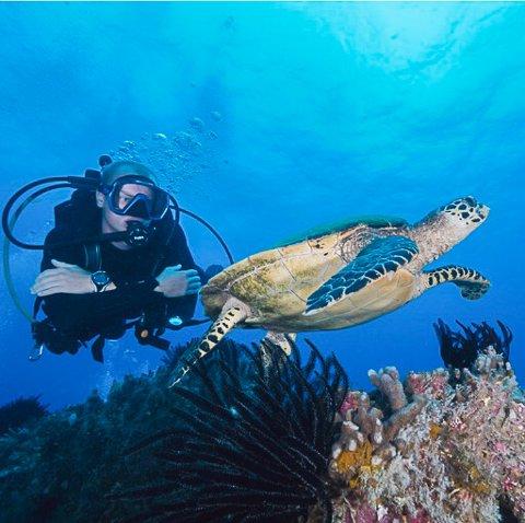 SKILPADDE PÅ NÆRT HOLD: Sebastian Fredstad fra Askim pakket sakene etter førstegangstjenesten og flyttet til Australia. Her jobber han i dag som dykkeinstruktør.