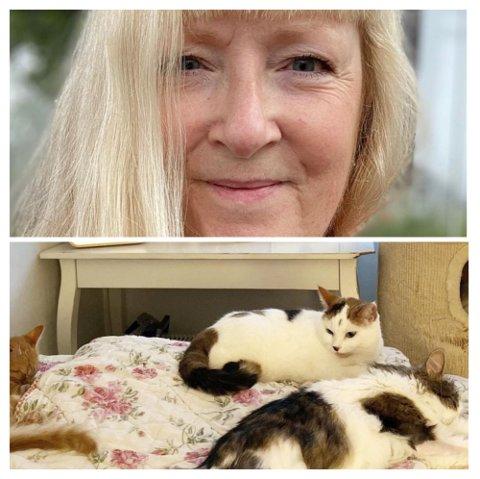 Helle Slente har et stort hjerte for trengende katter og har på det meste passet på som mange som elleve av dem hjemme. I tillegg har hun tre egne Instagram-sider.