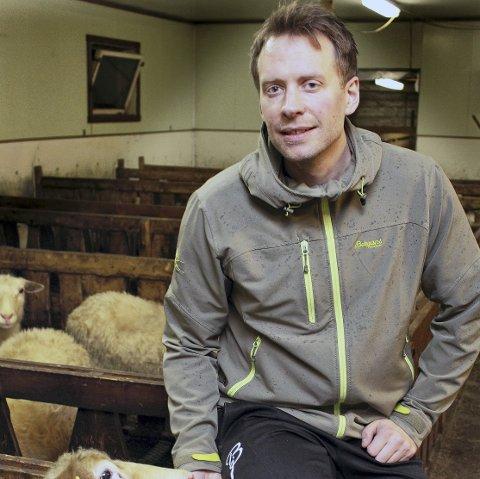 USIKKER FRAMTID: Magnus Grolid (33) har flyttet hjem til Hattfjelldal for å overta drifta på slektsgården i Grolia. Men nå har rovviltnemnda i Nordland skapt usikkerhet om det Grolid trodde var ei lysende framtid for sauenæringen på indre Helgeland. Foto: Nils Inge Lorentsen