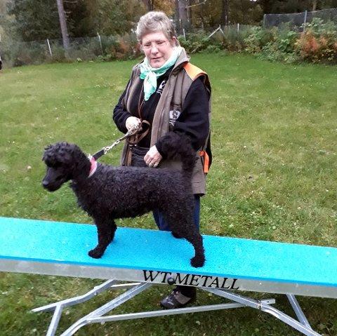 Det er Hundens dag, med muligheter for å prøve forskjellige aktiviteter. Her er Nina Ottersen og Selma på vippa, et apparat som brukes i agility..