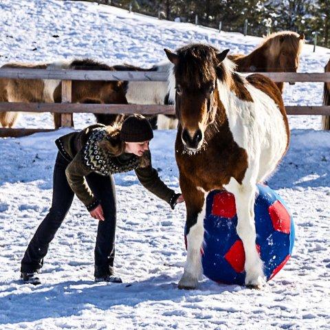 Hesteinstruktør Cathrine Fodstad vil vise hvordan man med trening lærer en hest å spille fotball.