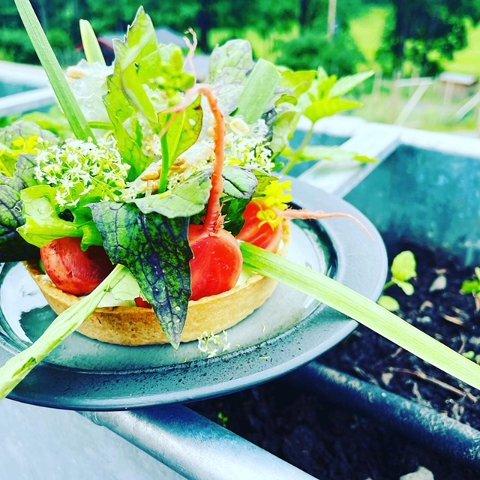 FRISTENDE: En enkel osteterte smaker godt og kan varieres i det uendelige. Her får du oppskriften fra Gartneriet som deles med Avisa Oslos lesere.