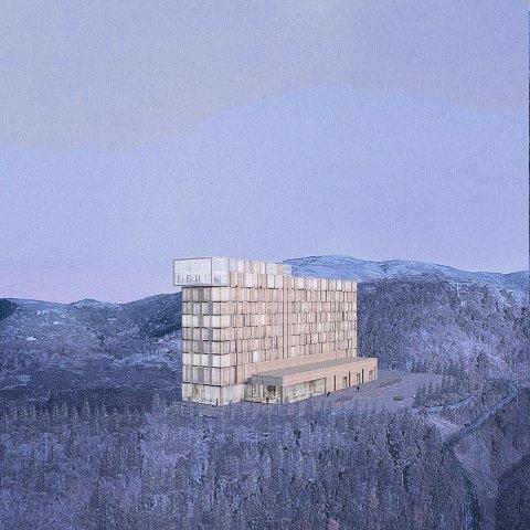 Nordic Arkitekter sine første skisser fiokk en svært blandet mottagelse.
