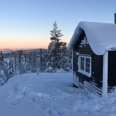 UTSIKT: Hytta ligger på en høyde ovenfor Damheggsjø og har flott utsikt.