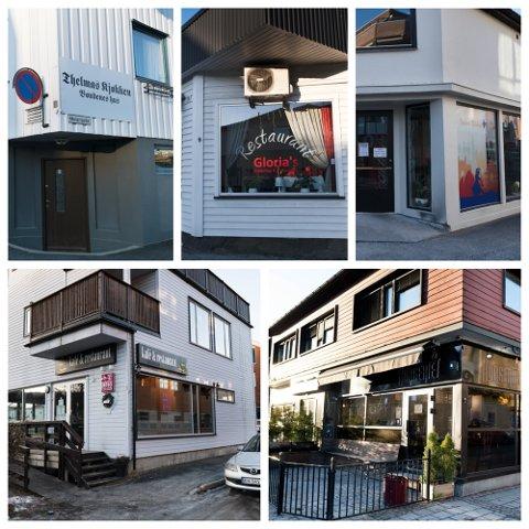 OVERSIKT: Det er mange ulike restauranter i de nye kommunedelene i Drammen kommune.