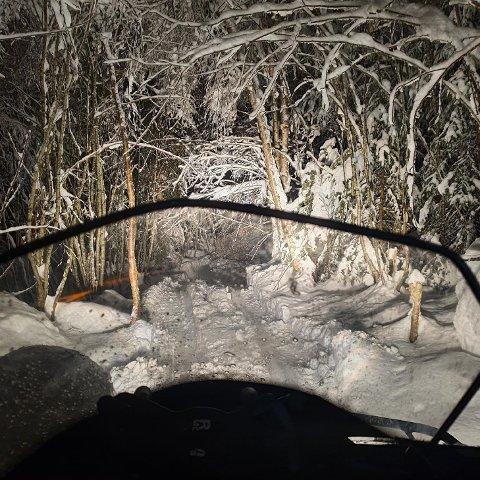 VANSKELIGE FORHOLD: Da Røde Kors Hjelpekorps Drammen hjalp en turgåer som hadde gått seg vill fredag kveld skapte mye snø og trær over veien utfordringer.
