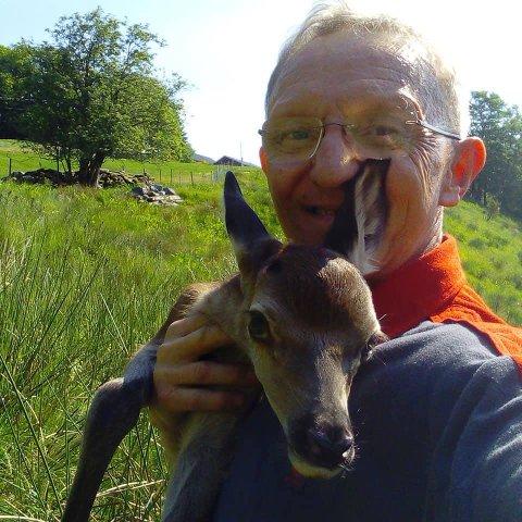 KALVEN OG POSTMANNEN: Jarl Audun Rivedal frå Askvoll saman med kalven han hjalp. – Det var ein fantastisk fin kalv. Det er jo nesten så ein får lyst å døype dei og ta dei med heim, seier Rivedal.
