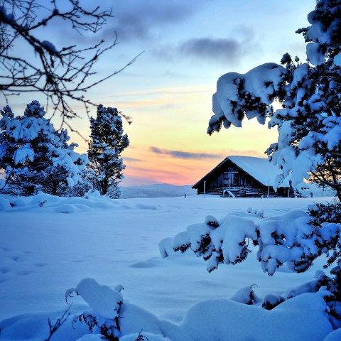VINNERBILDET: «Eventyrstemning på Kvamsfjellet» gikk rett til topps som desembervinner.Foto: Annette Linløkken