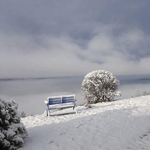 8. VINTERLAND: En benk med utsikt. Foto: Britt Sofie