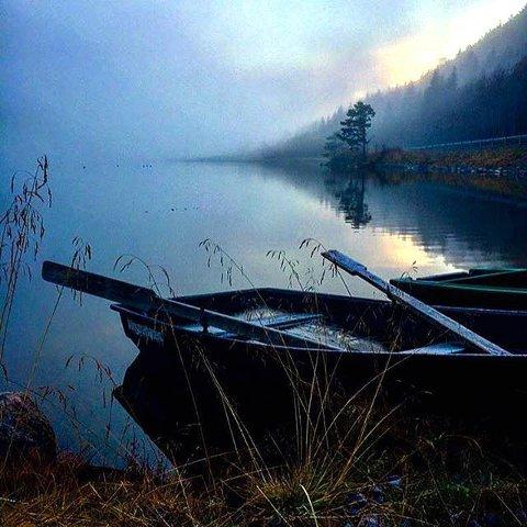 1. Magisk morgen: Regn og skodde en tidlig morgen. Foto: Magne Neprud