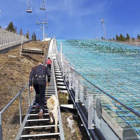 5. UT PÅ TUR: Vår på Lillehammer inkluderer joggetur til Lysgårdsbakken med 936 trappetrinn. Foto: Mette Istad