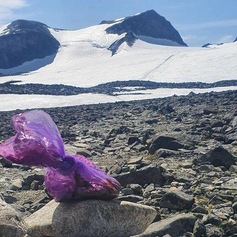 Hundmøkkposer er et tilbakevendende problem i Jotunheimen, ifølge oppsyn Åsmund Galde. Ikke bruk dem i fjellet. Møkka blir borte, sier han.