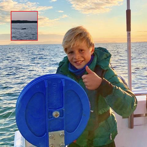 GØY: Andreas Virik Lia var på ferie på Hvaler for første gang. Da var det ekstra moro å få øye på tre delfiner. – Jeg kunne nesten hoppet uti og tatt på den, forteller niåringen ivrig.