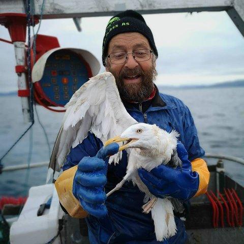 MÅSE: På en av Bjørnar Halvaris fisketurer satt en måse seg fast i ei snor. Halvari fikk løs måsen, som ikke nødvendigvis ser så takknemlig ut.