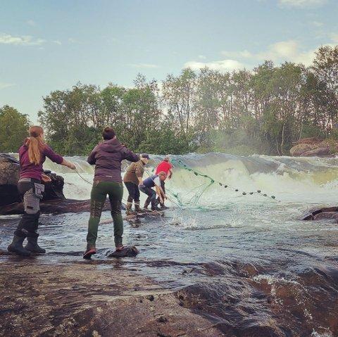 REAKSJONER: Mange er opptatt av fiske. Hildegunn Bøkevoll mottok mange reaksjoner da hun la ut dette bildet på Facebook-gruppen Bilder i Finnmark.