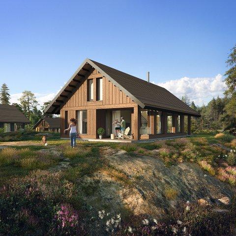 Størst: Dette hyttealternativet i hyttefeltet Sydri på Stabbestad er på 120 kvadratmeter og har en pris på 4.850,000 kroner.
