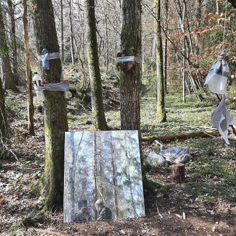 SPESIELT: Lisbeth Hagen kom over dette spesielle synet i skogen ved Ramberg på Jeløy denne uken, og sliter med å forstå hvorfor noen forsøpler skogen på denne måten.
