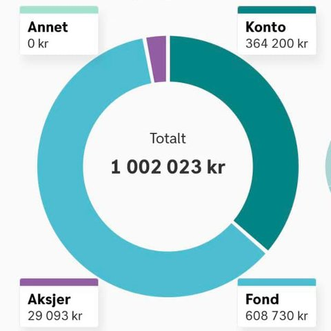 """MILLIONÆR: I Dnbs spareapp kan Ingrid Martinsen Gotvassli se hvor millionen hennes er plassert. Beløpet som står under """"konto"""" er penger på bruks- og sparekonto og BSU-konto. Oversikten viser også at hun har penger plassert i aksjer og aksjefond."""