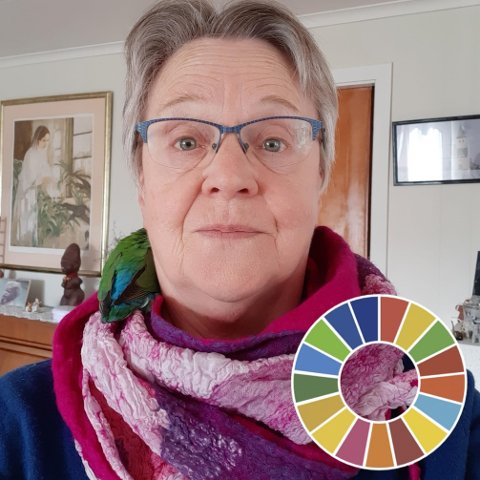 FORSVAR: – Jeg har, i motsetning til det som påstås i denne «interpellasjonen», blitt imponert både over Olafsens diplomatiske og kommunikative evner, skriver MDGS Paula Elvesveen i en kommentar til kritikken mot Vestre Totens ordfører.