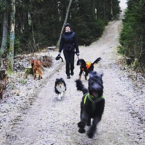 – Det kommer stadig flere hundeluftere på markedet, og det er viktig å finne en hundelufter som passer deg og din hund, sier Synne-Marie Fenn.