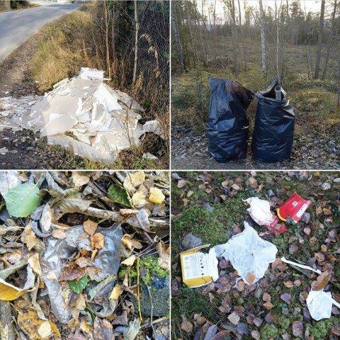 SØPPEL: Her er noe av søpla frivillige ringsaksokninger har bidratt til å fjerne.