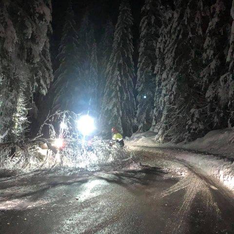 Kapper trær: Dette bildet er tatt på Nannestad-siden, like over klokken halv åtte tirsdag morgen. Her er det Hadeland maskindrift som vedlikeholdet.