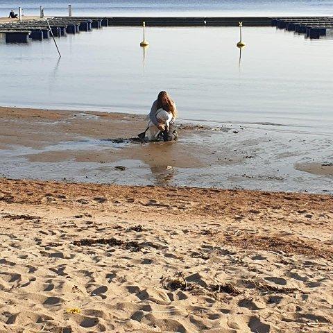 REDDET SVANEN: Slik gikk det for seg når Frode Munkhaugen fikk ut kroken som satt fast i beinet til svanen.