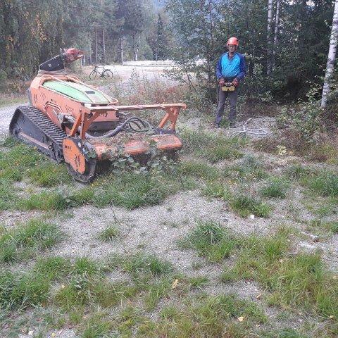 LØYPERYDDING: Tur- og skiløyper på Nes i Ådal er ryddet med godt utstyr.