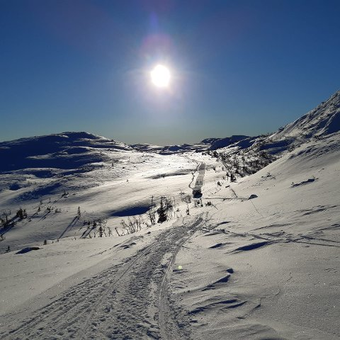 Slik så det ut på skitur i Vatnedalen oppe på Gaustablikk fredag morgen. Du kan oppleve det hele uka.