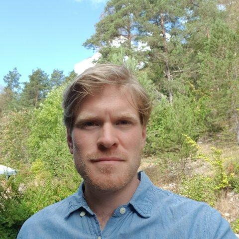REAGERER: Flautt og problematisk, seier Njål Ødegård