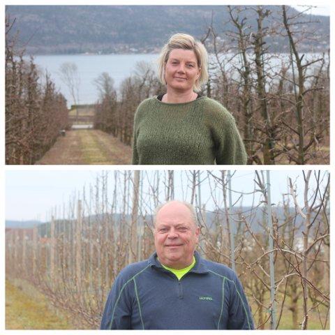 May Lisbeth Justad og Jon Berle åpner opp for norsk arbeidskraft i sommer. Det er lenge siden nordmenn var fast inventar på gårdene, men noen arbeidsoppgaver går det raskere å lære enn andre.