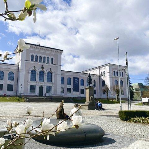 Universitetet i Bergen opplever rekordstor pågang av ferske søkere. På noen av de nyopprettede studiene er det bikkjekamp om å komme inn.