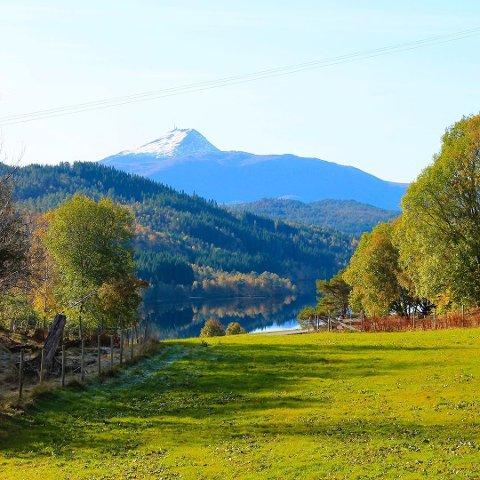 VARMEST: Høstfarger i Straumsnes i tingvoll. Kommunen hadde den høyeste temperaturen målt i Norge torsdag.
