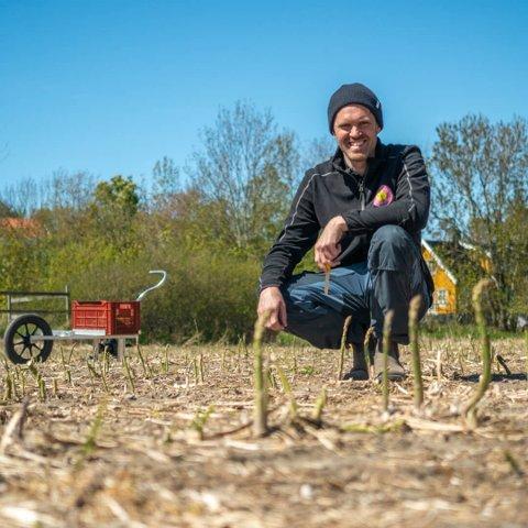 ENDELIG TILBAKE: Har du ventet på Hvasser aspargesen, har Edvart Freberg en gladbeskjed til deg - nå er de første buntene truffet butikkhyllene.