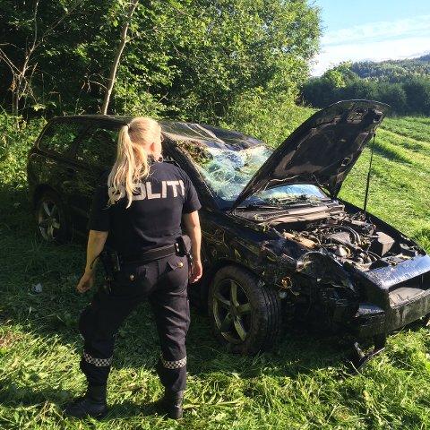 Bilen havnet på et jorde flere meter nedenfor veibanen.