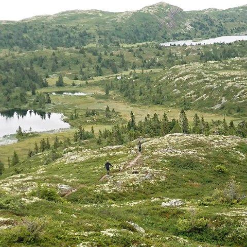 Stor eiendom: Opplysningsvesenets fond eier og forvalter tusen mål på Aurdalsåsen.