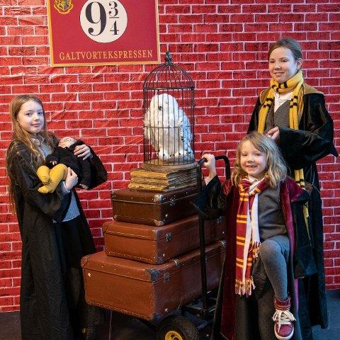KLART FOR AVGANG: Lørdag markerte biblioteket 20-årsjubileum for Harry Potter bøkene. Turen inn i bøkenes verden gikk fra perrong 9 ¾. Fra venstre: Lillian Syreng, Sofia Lyng Pedersen, Eva Lyng Pedersen, Sunniva Lyng Pedersen.