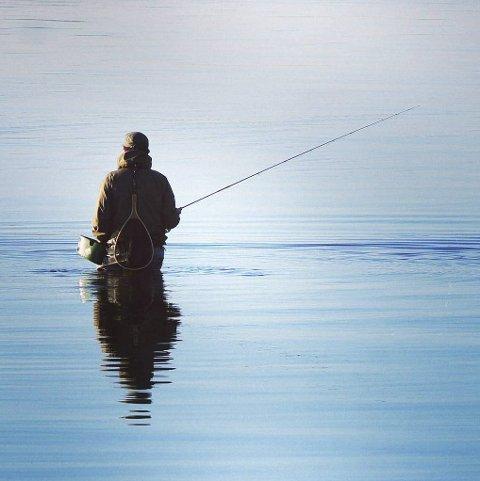 Ro: Inger Merethe Dahl har fanget fiskeren i sitt rette element. Bildet gjør det som et bilde skal, får seeren til å ta innover seg det bildet formidler.