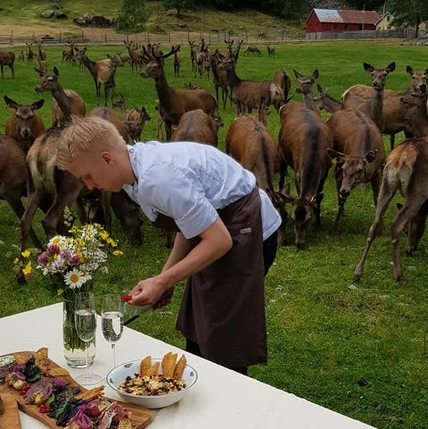 KOKK OG RÅVARE: Lærling Jonas Hovde frå restauranten Bien i Bergen fekk kjenna på nærleiken til råvarene under besøket på hjortefarmen i Mørkridsdalen.