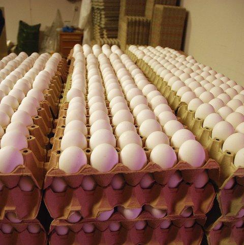 MEST POP: Av alle økologiske produkter, er det egg som er mest i vinden.