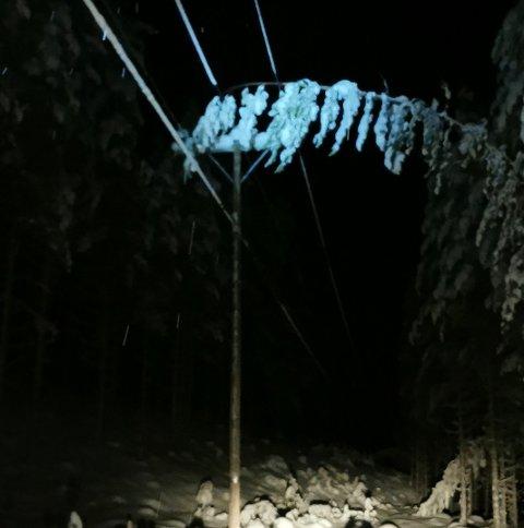 Denne greina var en av tre forårsaket strømstansen i Murudalen og Lusætermorkje tirsdag kveld. – Utfordringen er ofte at disse lange trærne går langt utenfor ryddesona vi har avtale med grunneierne på å rydde, sier Steinar Dahlen i Eidsiva Nett.