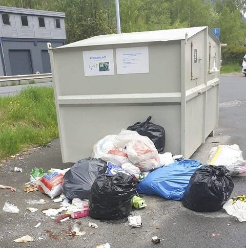 Lørdag: Boss rundt containeren på Egne Hjem. Foto: Privat