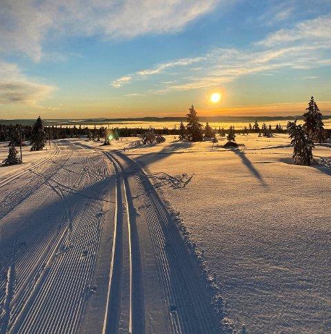 NYDELIG: Budor og Hedmarksvidda viser seg fra sin aller beste side om dagen.