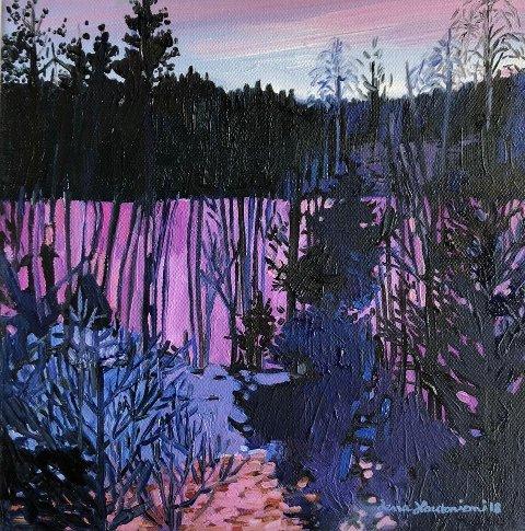 Dette bildet er av kunstneren Lena Hautoniemi.