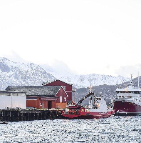 Privat: Ørnes Havn AS frykter tap av arbeidsplasser.