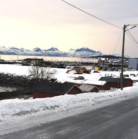 Attraktivt: Området utenfor Nordfold er attraktivt.